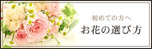 初めての方へ お花の選び方